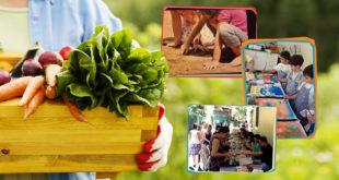 Câmara aprova a inclusão de alimentos orgânicos na alimentação escolar da Rede Pública de Ensino do DF